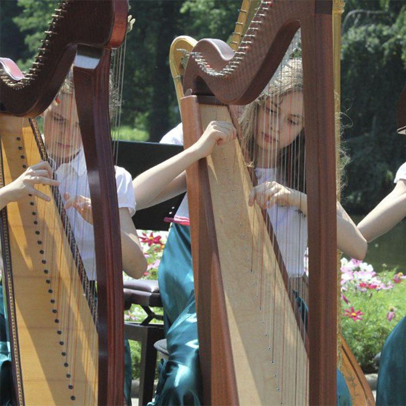 Stowarzyszenie Harfa Dzieciom